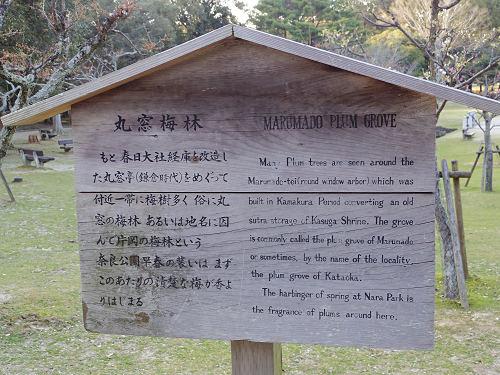 円窓亭@浅茅ヶ原園地(奈良公園)-07