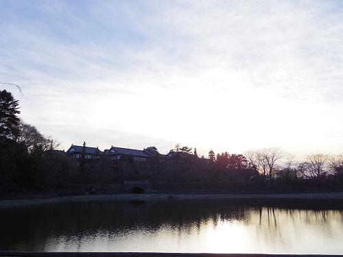 荒池の夕景@奈良公園-17