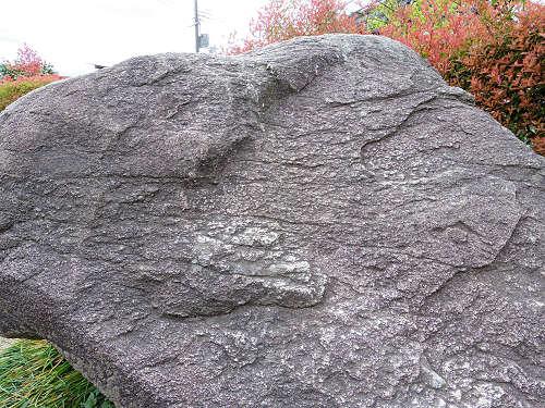 飛鳥の石造物「亀石」-05