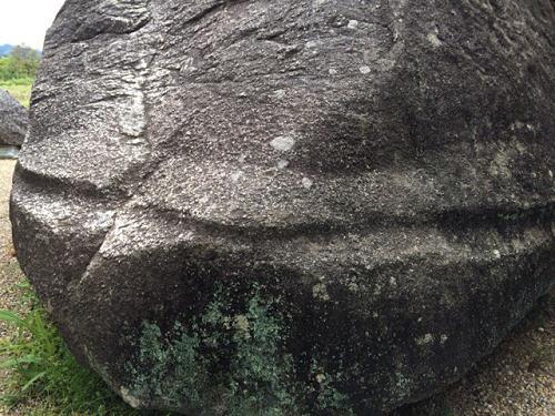 飛鳥の石造物「亀石」-07