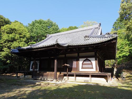 ナラノヤエザクラを探して@奈良公園周辺-12