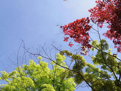高野山開創1200年記念大法会@和歌山県高野町-09