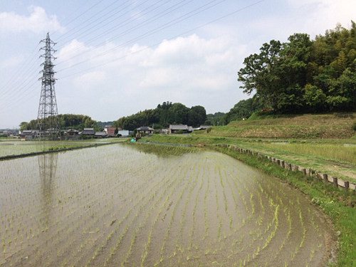 ヤマトタケル白鳥三陵の一つ『日本武尊白鳥陵』@御所市
