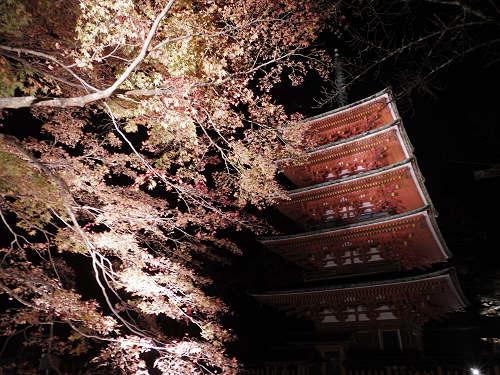 夜の境内を歩ける『紅葉ライトアップ』@長谷寺(桜井市初瀬)