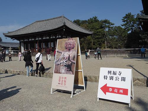 『阿修羅~天平乾漆群像展』@興福寺仮講堂(奈良市)