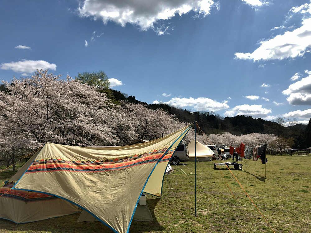 縄文遺跡でお花見キャンプ『カントリーパーク大川』@山添村