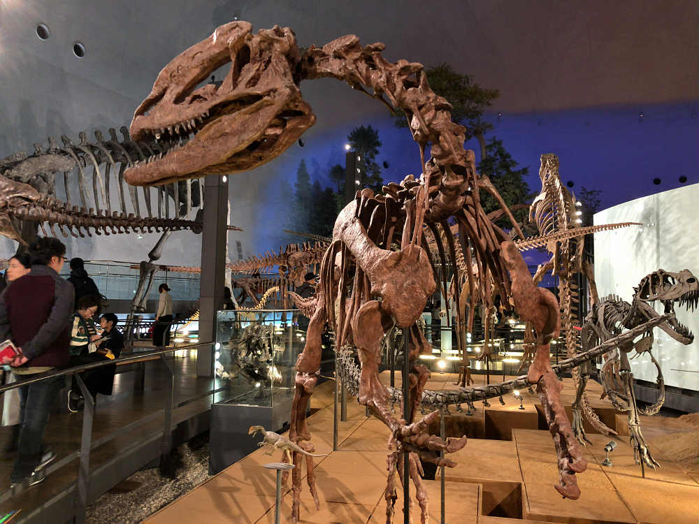かっこいい!大人も夢中になる『福井県立恐竜博物館』@福井県