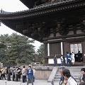 『興福寺』五重塔の初層を拝観しました!@奈良市