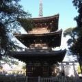 小さな集落に立つ古式の三重塔『百済寺』@広陵町