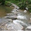 万葉集に詠まれた飛鳥川の『飛び石(石橋)』@明日香村