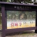 奈良博『特別展 當麻寺』の見どころと日本最古「梵鐘」