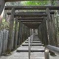 連続する鳥居が厳しく美しい『立里荒神社』@野迫川村