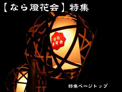 『なら燈花会』ガイド